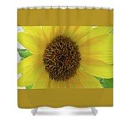 Unique Sunflower Shower Curtain