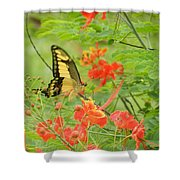 Amazonia Butterfly Shower Curtain
