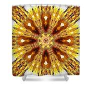 Amber Sun. Digital Art 3 Shower Curtain