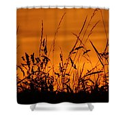 Amber Sundown Meadow Grass Silhouette  Shower Curtain
