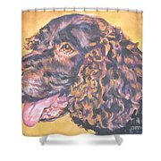America Water Spaniel Shower Curtain
