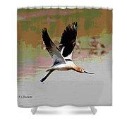 American Avocet Flying Shower Curtain