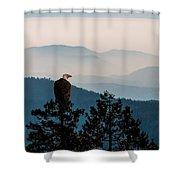 American Bald Eagle Sentinel Shower Curtain