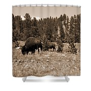 American Bison Vintage Shower Curtain