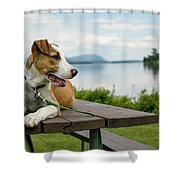 American Breed On Table Shower Curtain