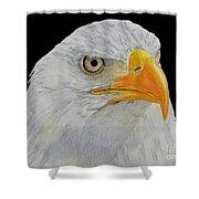 American Eagle Shower Curtain