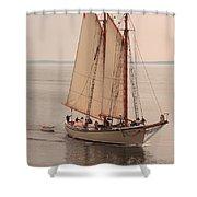 American Eagle Sail Shower Curtain