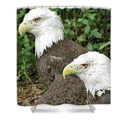 American Eagles Shower Curtain