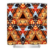 American Elections 2016 Shower Curtain