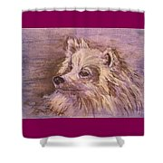 American Eskimo Dog Shower Curtain