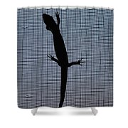 American Five-lined Skink Shower Curtain