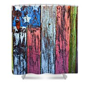American Flag Gate Shower Curtain