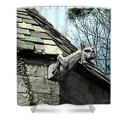 American Gargoyle Shower Curtain