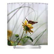 American Lady Butterfly Balancing By The Sea  Shower Curtain