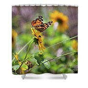 American Lady Butterfly By The Beach Shower Curtain