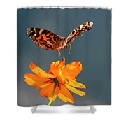 American Lady Butterfly Lands On Cosmos Flower Shower Curtain