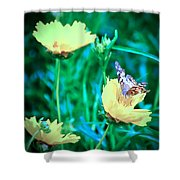 American Lady On Coreopsis Shower Curtain
