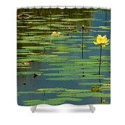American Lotus Shower Curtain