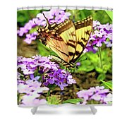 Yellow Eastern Tiger Swallowtail Series Shower Curtain