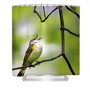 American Redstart Female 2 Shower Curtain