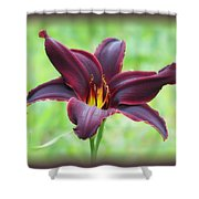 American Revolution With Vignette - Daylily Shower Curtain