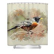 American Robin - Watercolor Art Shower Curtain