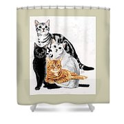 American Shorthair Shower Curtain