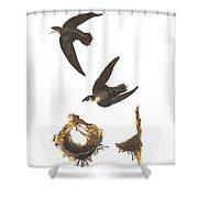 American Swift Shower Curtain