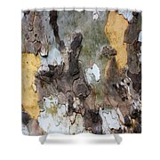 American Sycamore Bark Shower Curtain