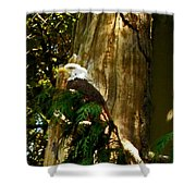 American Symbol Shower Curtain