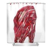 Amerind Shower Curtain