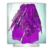 Ameynra Fashion - Iris Skirt Shower Curtain