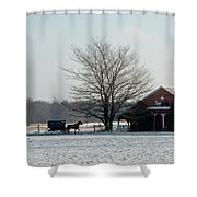 Amish Buggy And Old School Shower Curtain
