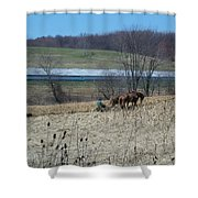 Amish Farming Shower Curtain