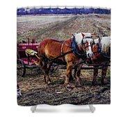 Amish Farming Team Shower Curtain