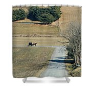 Amish Horse And Buggy On A Country Road Shower Curtain