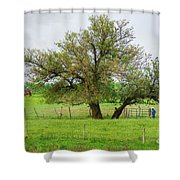 Amish Man And Tree Shower Curtain