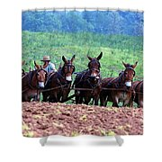 Amish Plowing The Fields With Mules Shower Curtain
