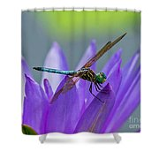 Among The Lilies Shower Curtain