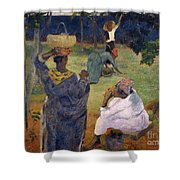 Among The Magoes At Martinique Shower Curtain