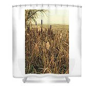 *among The Reeds  #landscape Shower Curtain