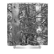 Among The Shadows Shower Curtain