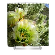 Among The Thorns 3 Shower Curtain