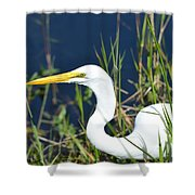 Among The Weeds Shower Curtain