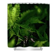 Amongst The Fern Shower Curtain