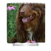 Amongst The Flowers Shower Curtain