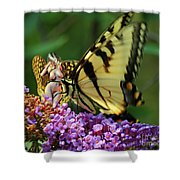 Amorous Butterfly And Faerie Shower Curtain