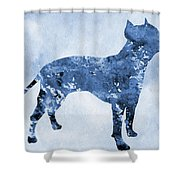 Amstaff-blue Shower Curtain