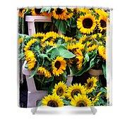 Amsterdam Sunflowers Shower Curtain