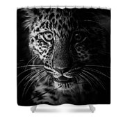 Amur Cub Shower Curtain